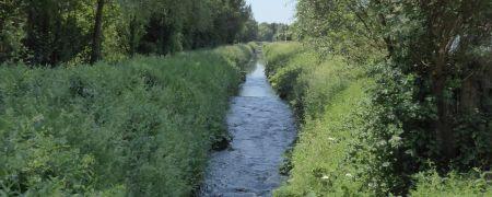 IJsedag in Loonbeek (Huldenberg)