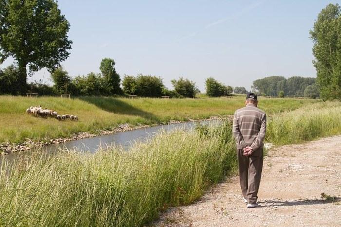 moenebroekbeek3.jpg