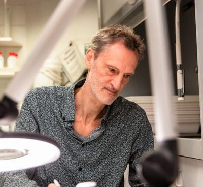 Christophe Maes - bureauwerk