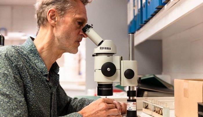 Christophe Maes - microscooponderzoek