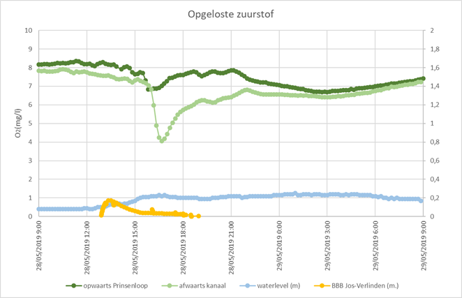Impakt multiparametersondes grafiek Warmbeek