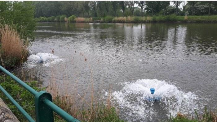 Beluchters zorgen voor extra zuurstof aan de monding van de Zwalm om vissen te lokken die de verontreiniging van de Boven-Schelde ontvluchten.