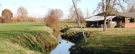 slibruiming Bosbeek