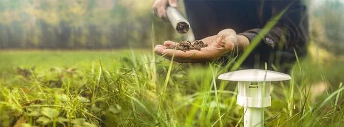 Gazondolk CurieuzeNeuzen in de tuin
