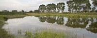 4 miljoen euro om waterschaarste bij langdurige droogte aan te pakken