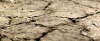Alarmfase (code oranje) voor droogte in heel Vlaanderen