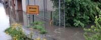 Kritieke overstromingen in het Demer- en Maas- en Dijlebekken