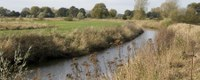 LIFE-project Delta tilt natuur naar Europees topniveau