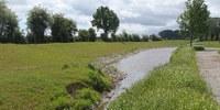 Nieuw wachtbekken langs Moenebroekbeek in Lierde