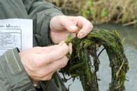 Nieuwe meetresultaten oppervlaktewaterkwaliteit