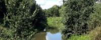 Nieuwe toekomst voor de Kleine Nete en het 'gebied Olympiadelaan' in Herentals