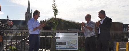 Nieuwe vistrap in het Leuvense Sluispark al succesvol