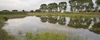 Ondertekening charter: eerste stap naar riviercontract voor Kerkebeek