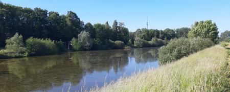 Slibruiming en aanpassing wachtbekkens Zuunbeek