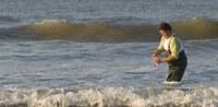 Uitstekende score voor Vlaams zwemwater