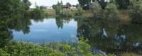 Water uit wachtbekkens VMM beschikbaar in Vilvoorde