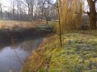 Werken oeverzones Schijn in Rivierenhof