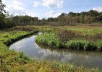VMM ondersteunt waterbeheerders Demerbekken