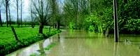 Gedachtewisseling wateroverlast in Vlaams Parlement