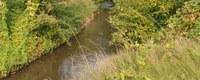 Handen in mekaar voor integratie bodemsanering in natuurgebieden