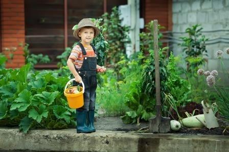 Gezond tuinieren