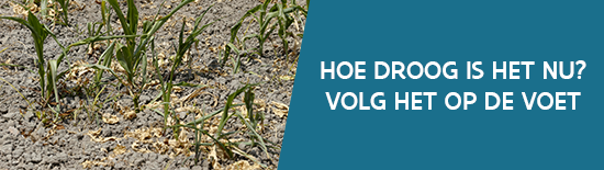 Banner droogte