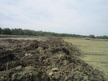 Hellekens verwijderen vegetatie