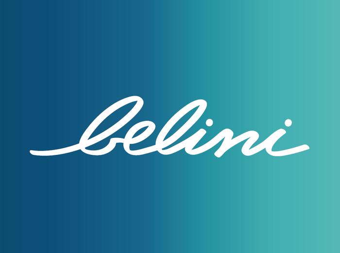 Logo Belini